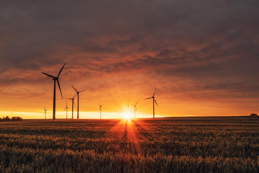 A Carbon Neutral North America