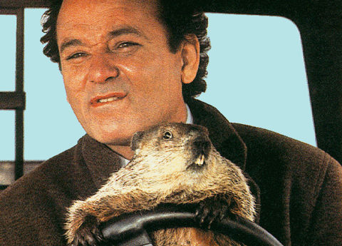 CloudFlare Keeps Groundhog Day Online!